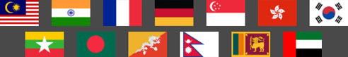 milligram-it-service-provided-countries-flag-mobile